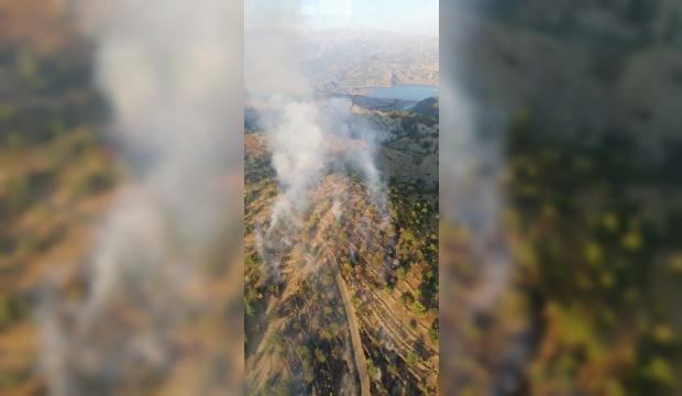 Kahramanmaraş'ta Orman Yangını: Kontrol Altına Alınmaya Çalışılıyor